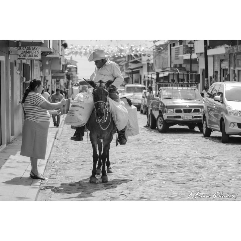 Xico Xico-VEracruz Xico Pueblo Mágico Pueblo Burro Lechero Calle Blanco Y Negro Blanco Y Negro. Blanco Y Negro, Fotografia Street Town Personas Campo Leche Milk