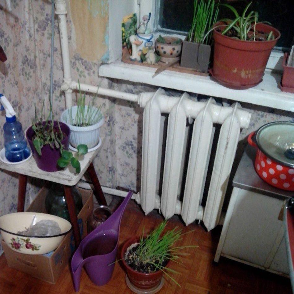 #2013 #room #kitchen #хаос #бардак #кухня #instagood #instamood #instaday