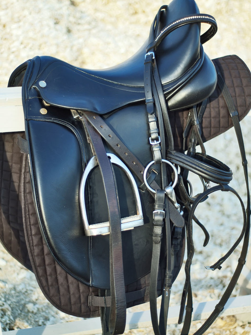 Black Bridle Close-up Day Dressage Horse Horse Life Horse Photography  No People Outdoors Saddle Sport Sportive Stirrup