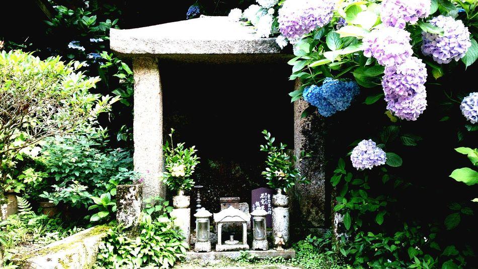 Japan Temple Stone Statue