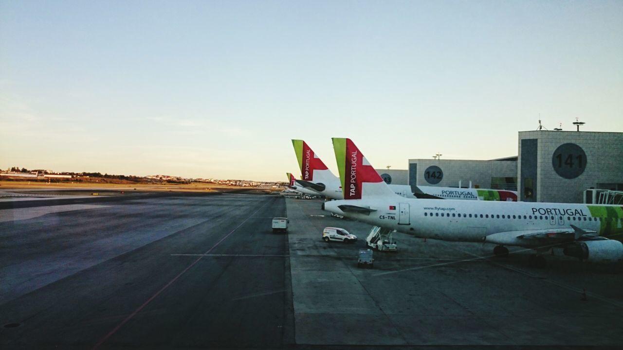 Airport AirPlane ✈ TAP Air Portugal Portugal Lissabon Lissabon Airport Love To Travel Sunrise