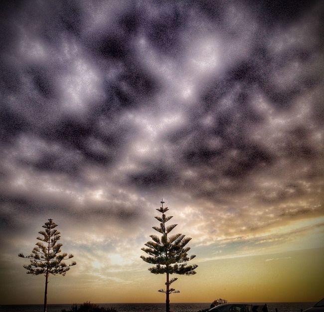 Beachphotography Beach Sky_collection Nature_collection Clouds And Sky Tree_collection