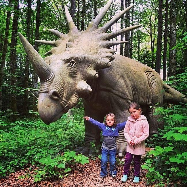 Bald unser neues Haustier? Wenns nach Shanaya gehen würde dann sofort. Ausflug in Dino-Park #reclere #jura #dinosaurier #dino #tropfsteinhöhle #archeologie #vergangenheit #forschung #swiss #switzerland #schweiz #wandern #haustier Wandern Haustier Dino Switzerland Swiss Schweiz Jura Dinosaurier  Vergangenheit Reclere Forschung Tropfsteinhöhle Archeologie