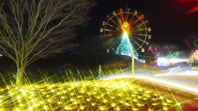Nightphotography Night Lights ドイツ村 イルミネーション Illumination Photography