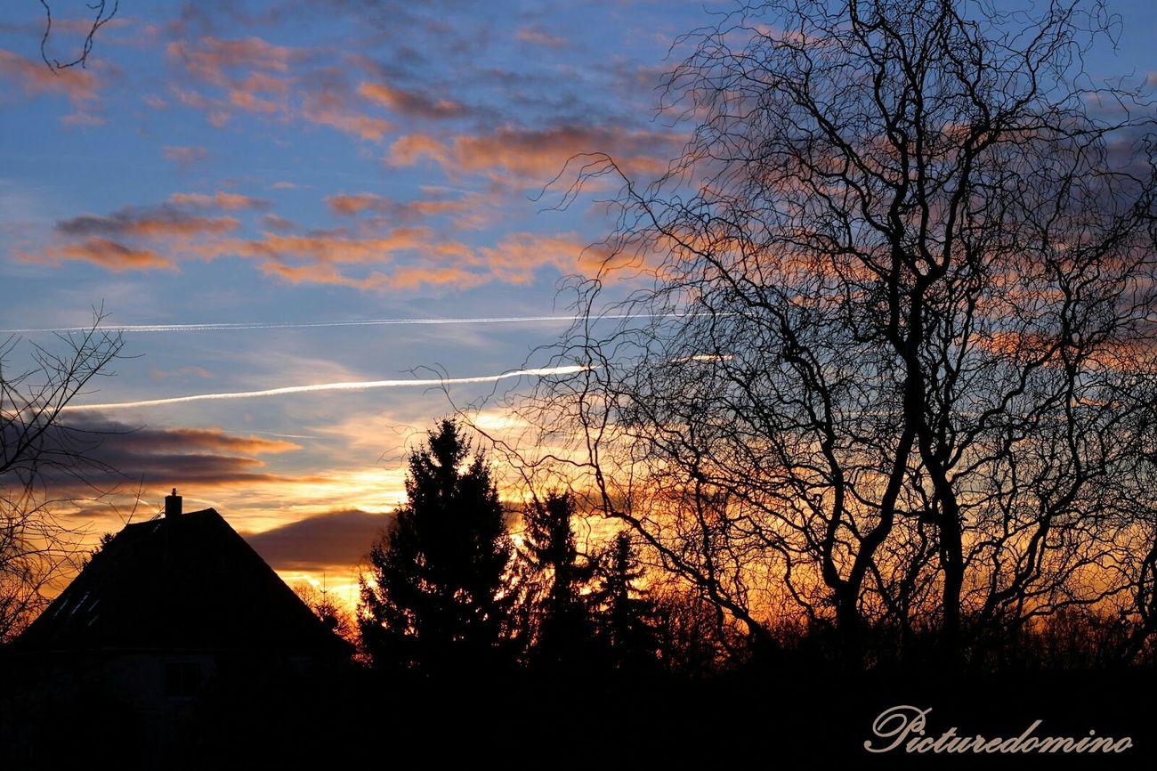 Sunrise Goodmorning Day Enjoying The View