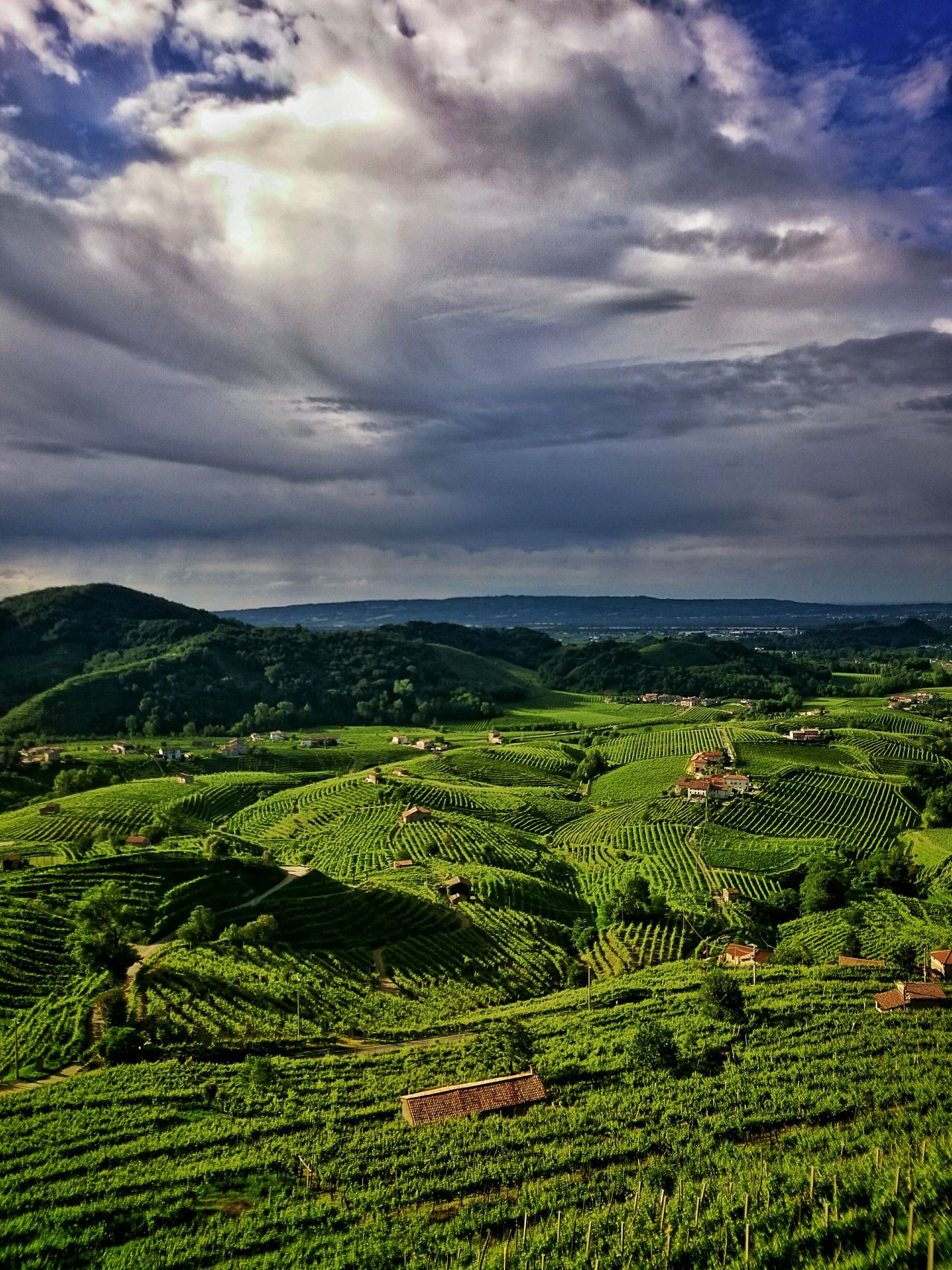 Valdobbiadene Cartizze Cartizzehills Prosecco Proseccohills Proseccosuperiore Italy Veneto Cloud Clouds And Sky The Great Outdoors - 2016 EyeEm Awards Color Palette A Bird's Eye View Flying High