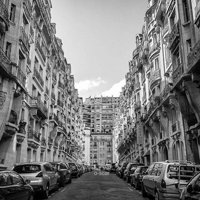 ✨ Avenue Fremiet / Paris XV Paris Urbanphotography My City Streetphoto_bw Streetphotography Black And White Blackandwhite Photography Blackandwhite Urban Street
