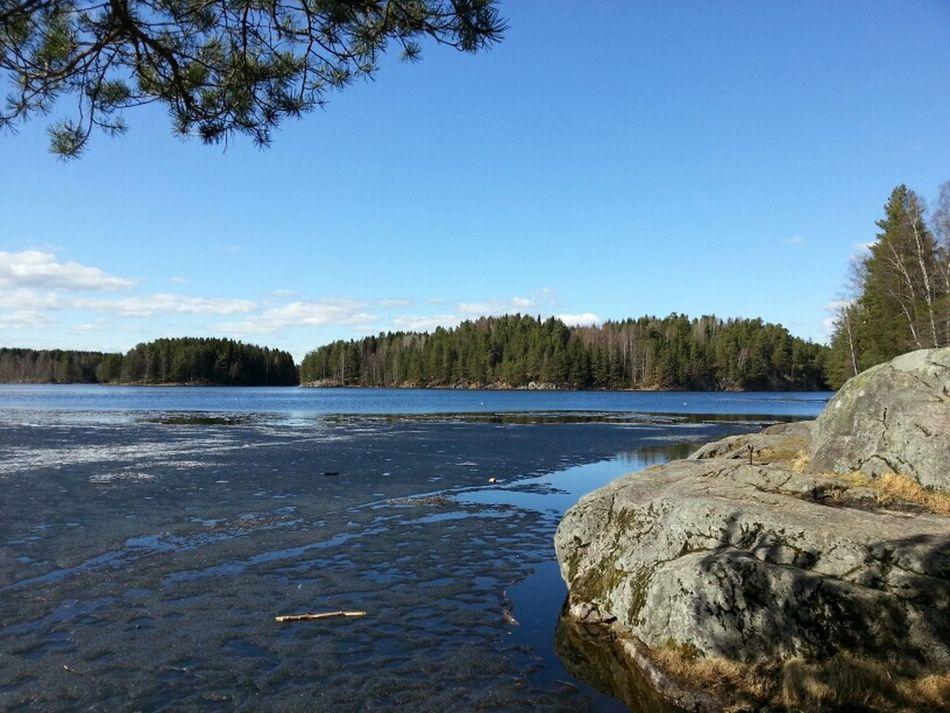 ahir vam fer una excursió de 12km per uns boscos propers a #Oslo #Norway