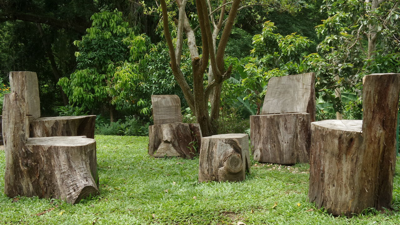 Trinidad And Tobago Lopinot Samsung Kzoom Taking Photos Enjoying The Sights Historical Site Chairs Trees No Edit/no Filter Keeping It Simple