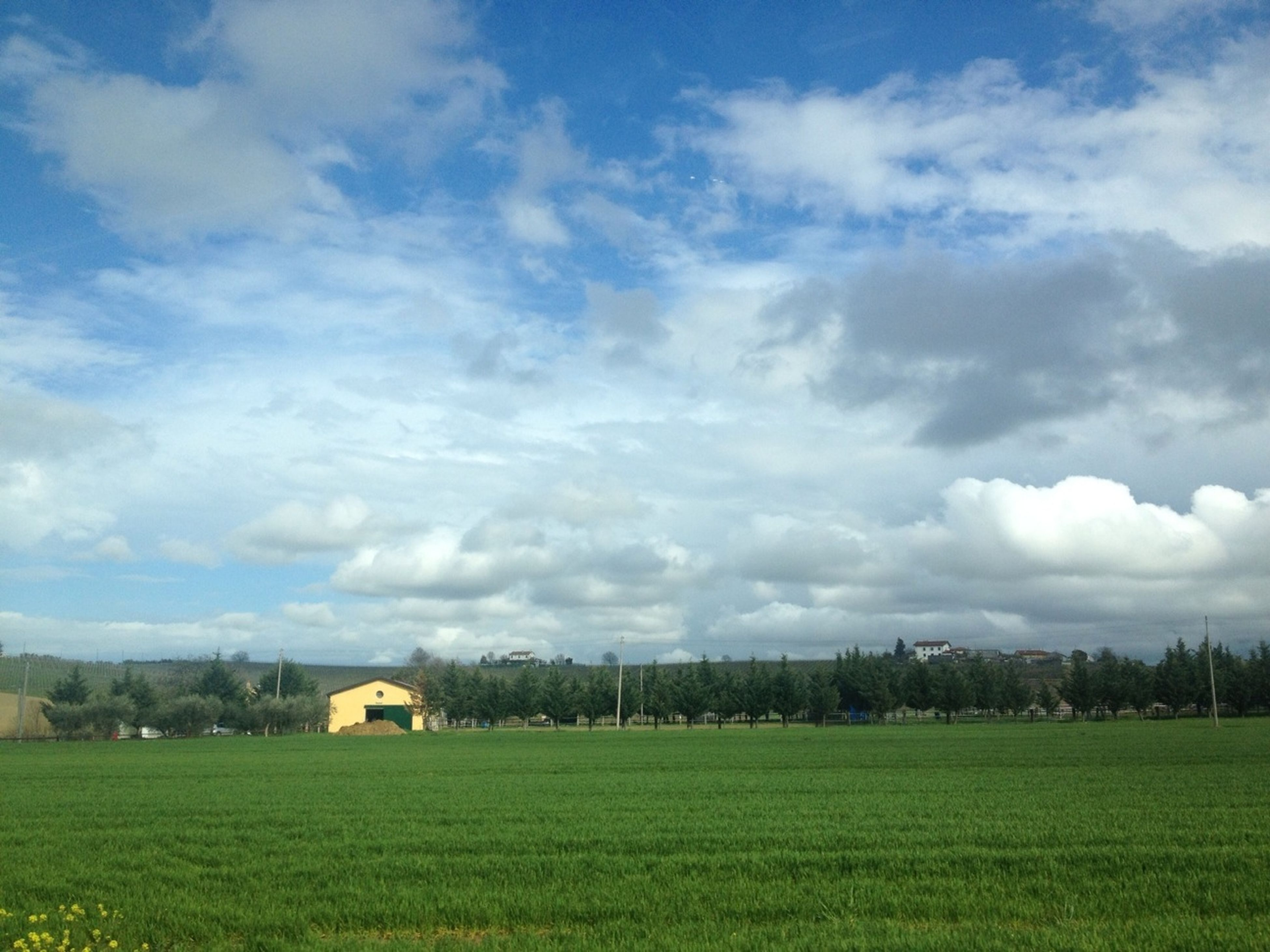 grass, field, landscape, sky, building exterior, grassy, green color, architecture, cloud - sky, built structure, rural scene, tranquil scene, house, tranquility, nature, beauty in nature, scenics, cloud, tree, growth