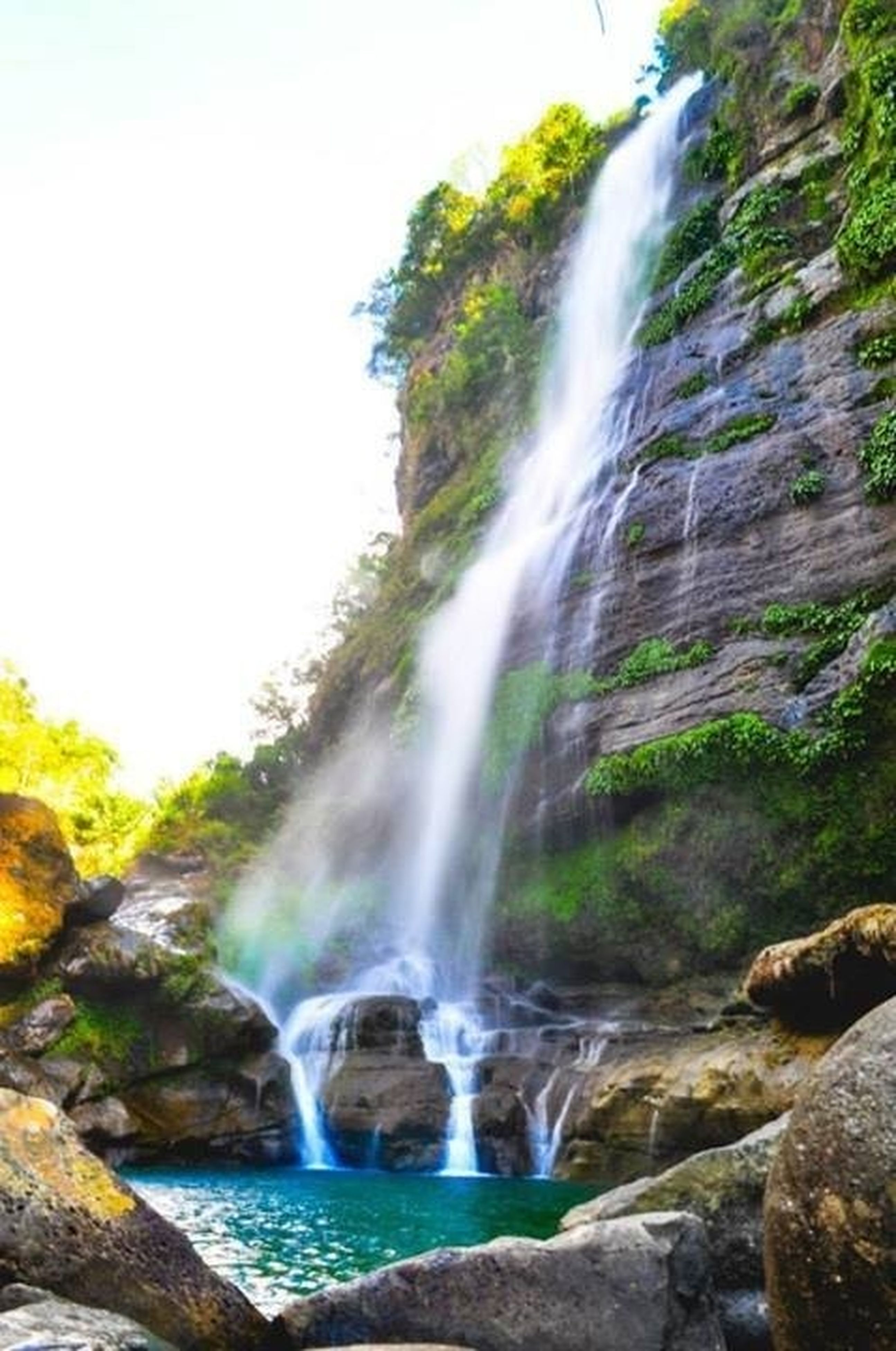 waterfall, motion, flowing water, water, long exposure, rock - object, flowing, beauty in nature, scenics, nature, blurred motion, rock formation, splashing, power in nature, rock, forest, idyllic, environment, mountain, tree