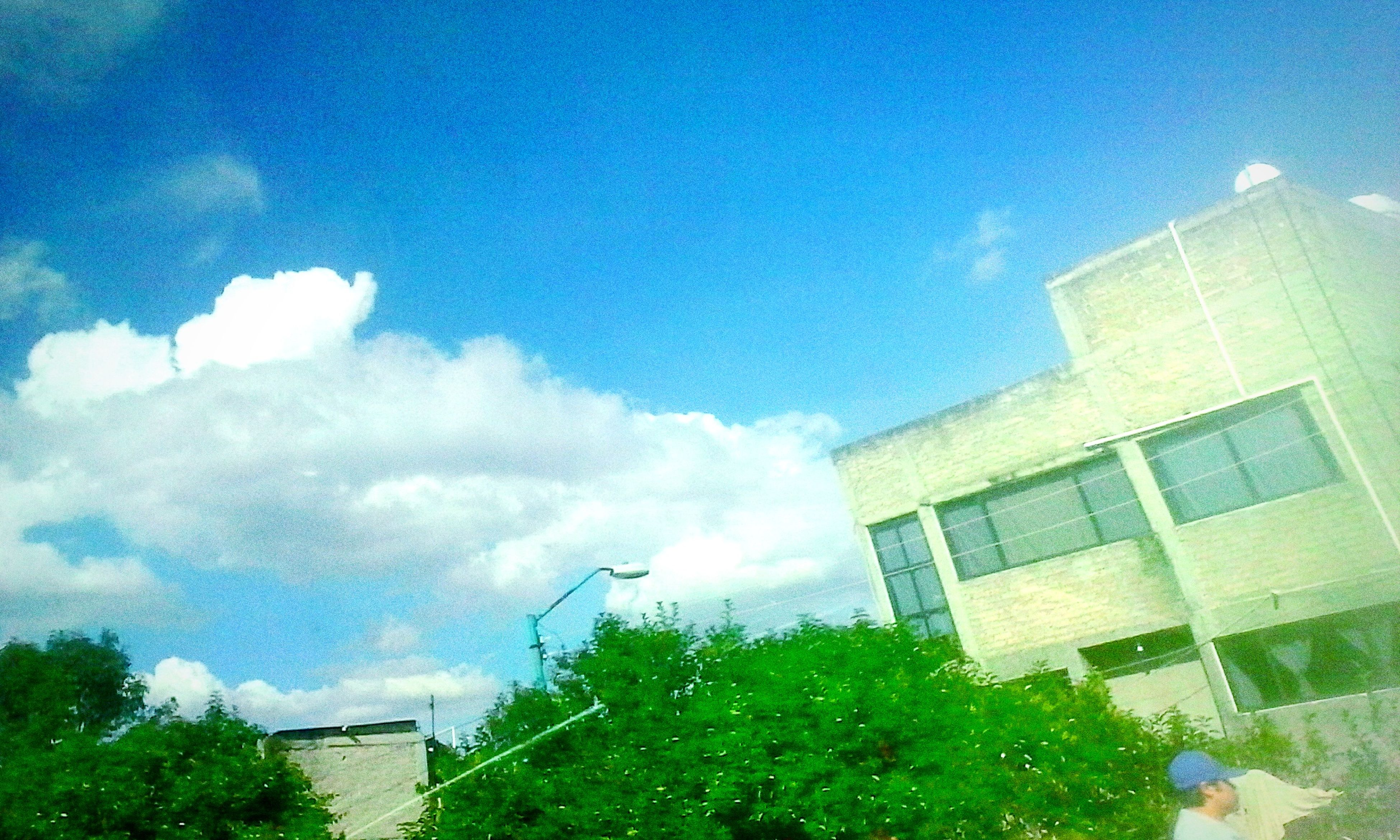building exterior, architecture, built structure, low angle view, sky, cloud - sky, tree, blue, building, cloud, day, cloudy, city, outdoors, growth, no people, sunlight, house, window, residential building