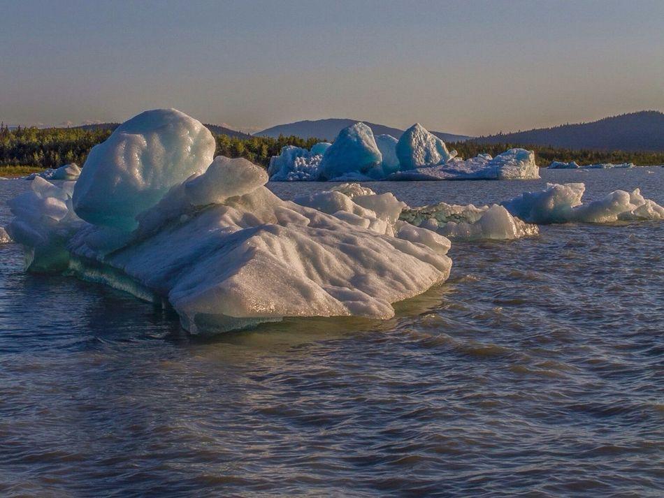 Ice Ice Bergs