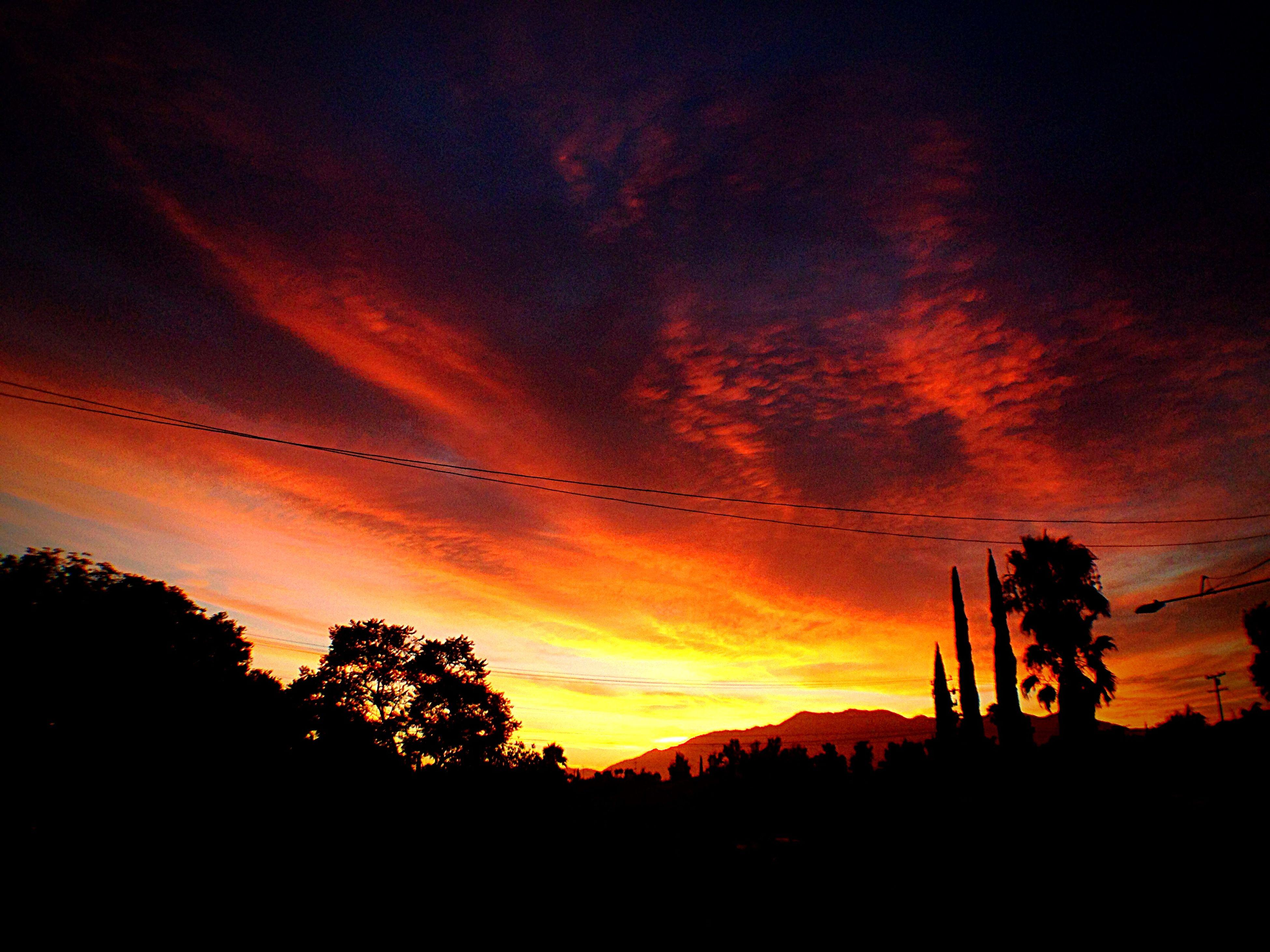 silhouette, sunset, scenics, tree, sky, beauty in nature, tranquil scene, tranquility, orange color, nature, landscape, idyllic, cloud - sky, dramatic sky, cloud, dark, majestic, non-urban scene, dusk, outdoors