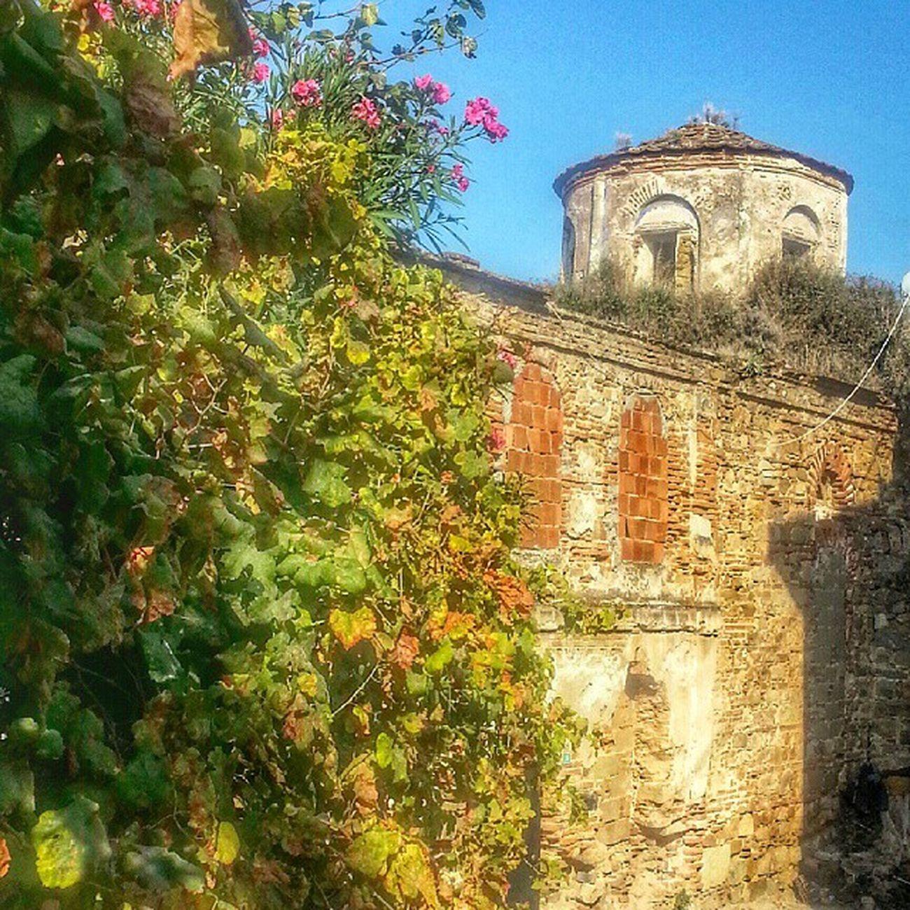 Trilye 'de pek cok Tarihi eser var.Bu da onlardan biri Kemerli Kilise adi ile bilinen Panagia Pantobasillissa (Bakire Meryem). Yapinin kubbe ve can kulesi 1885 deki buyuk depremde yikilmis,daha sonra onarilmissa da ozgun niteligini kaybetmis.Sutunlari Iskenderiye'den getirilen yapi dunyada duvarlarina Resim yapilan ILK kilise oldugu belirtiliyor. Bu arada muthis bir manzarasi var ve Trilyede'ki diger Tarihi yapilar gibi metruk durumda!Bursa metropolitligine satilmis ve restore edilip ibadete acilacagi yazilmis bir gazetede... Türkiye Turkishfollowers Instaturk Instagramturkey Historical Arthistory Mimari Architecture Travel Seyahat Ig_turkey Instago