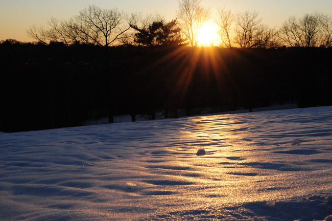Snowy Field Sunset Field Landscape Nature Scenics Snow Snowy Sunset Solitude Sunset Tranquil Scene