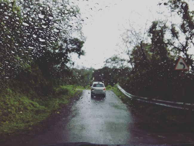 Your destination always depends on the path you choose . Hello World ✌ Check This Out Rain Rainy Season Go Green Feel Green Simply Beautiful. Outdoors On The Road Driving Nature Lover Freshness Beauty In Nature
