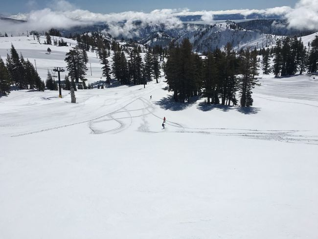 There is no place like California - almost May and fresh powder. Tomorrows plan: the beach.