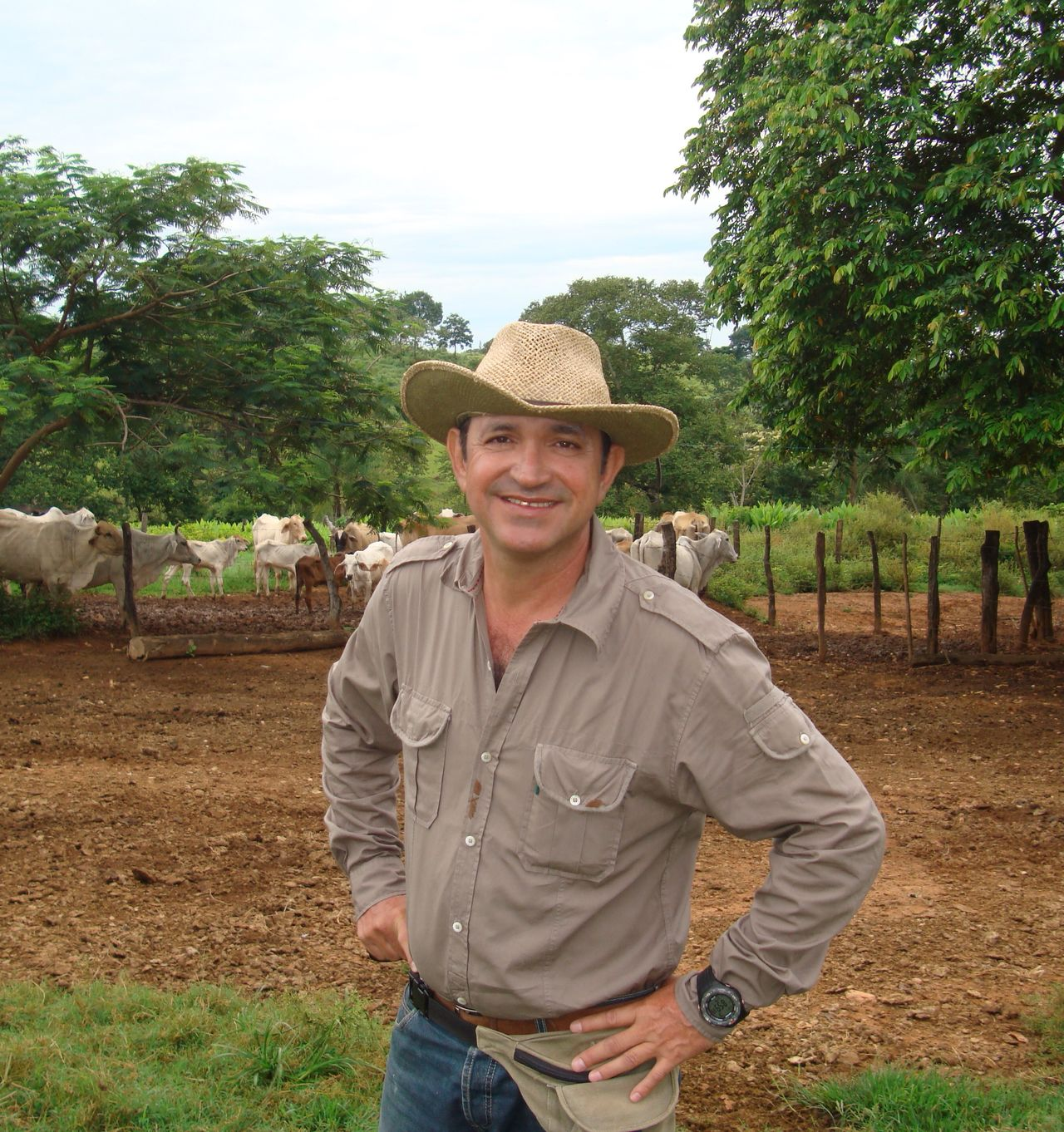Beautiful stock photos of cowboy, Caucasian Ethnicity, Cowboy, Day, Domestic Cattle