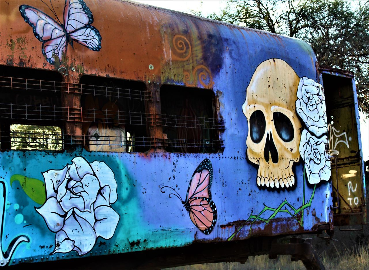 graffiti, art and craft, creativity, street art, day, built structure, no people, outdoors, architecture, building exterior, close-up