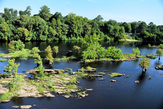 Beauty In Nature Coosa River Riverside Water