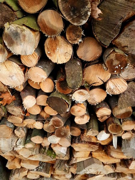 Wood - Material Wood