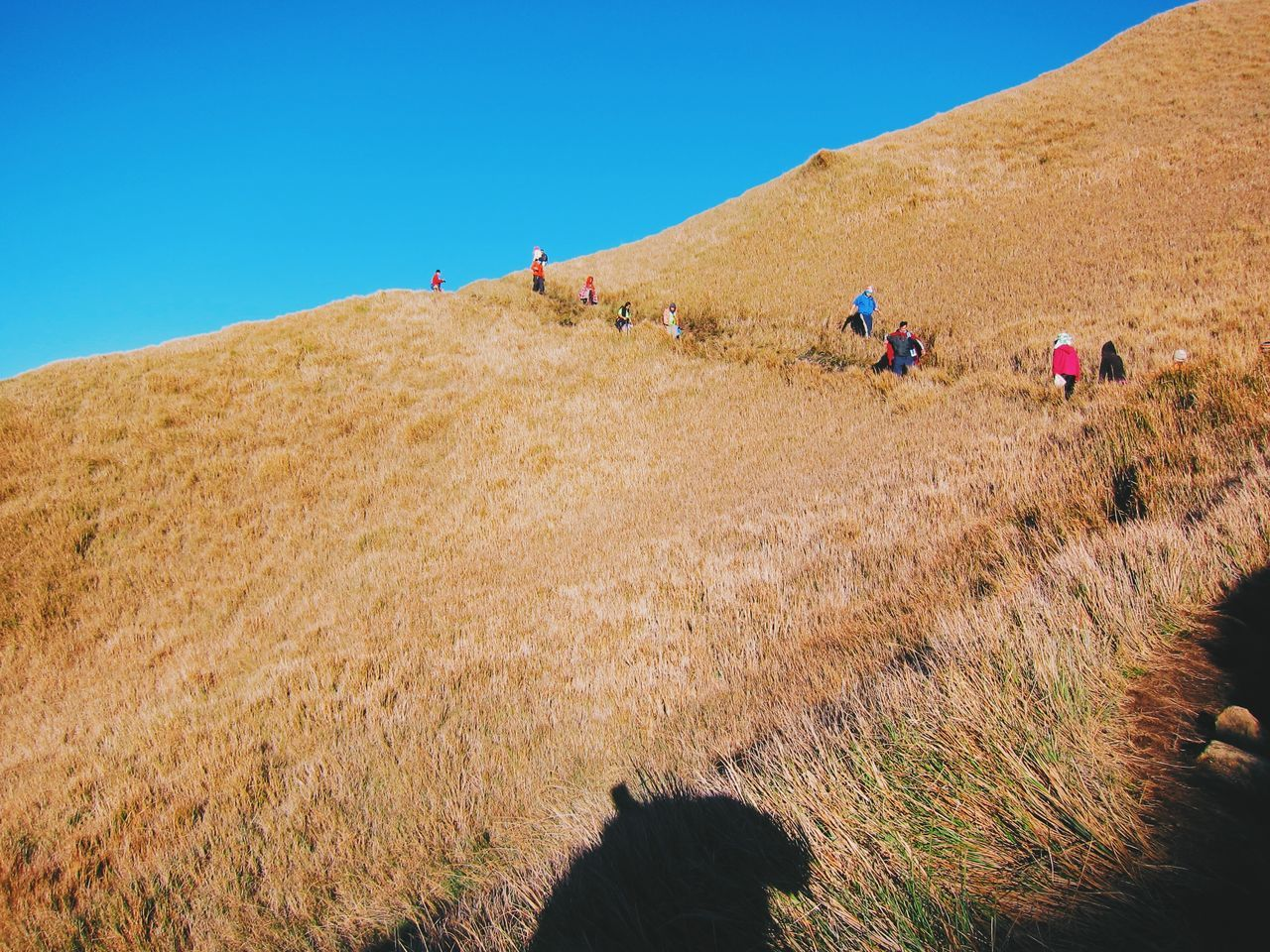 I climb not to conquer the mountain, but to conquer myself. Climbing A Mountain Mountainer Exploring Nature Eyeem Philippines