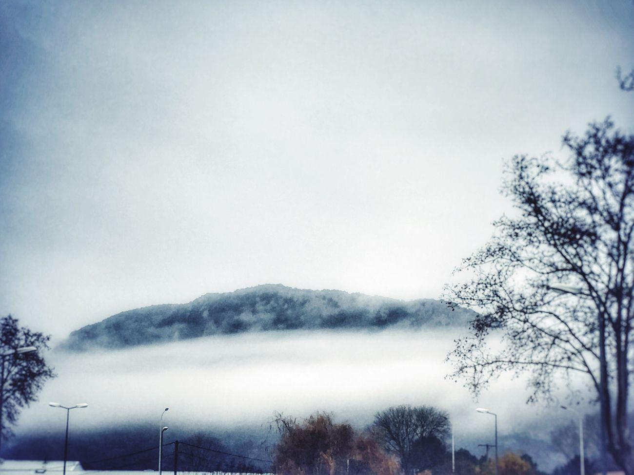 """""""L'hiver à ses débuts ressemble toujours à une fête attendue. Ce n'est qu'après qu'on se demande ce qu'on pouvait bien tant attendre."""" Marie Laberge Hello World Relaxing Natural Beauty Wild Life Seul Perdu"""