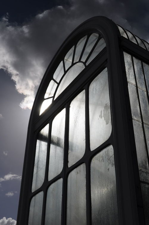 Arch Architectural Feature Architecture Back Lit Built Structure Cloud - Sky Curve Day Geometric Shape Low Angle View No People Old Buildings Outdoors Palm House, Kew Gardens Sky Victorian