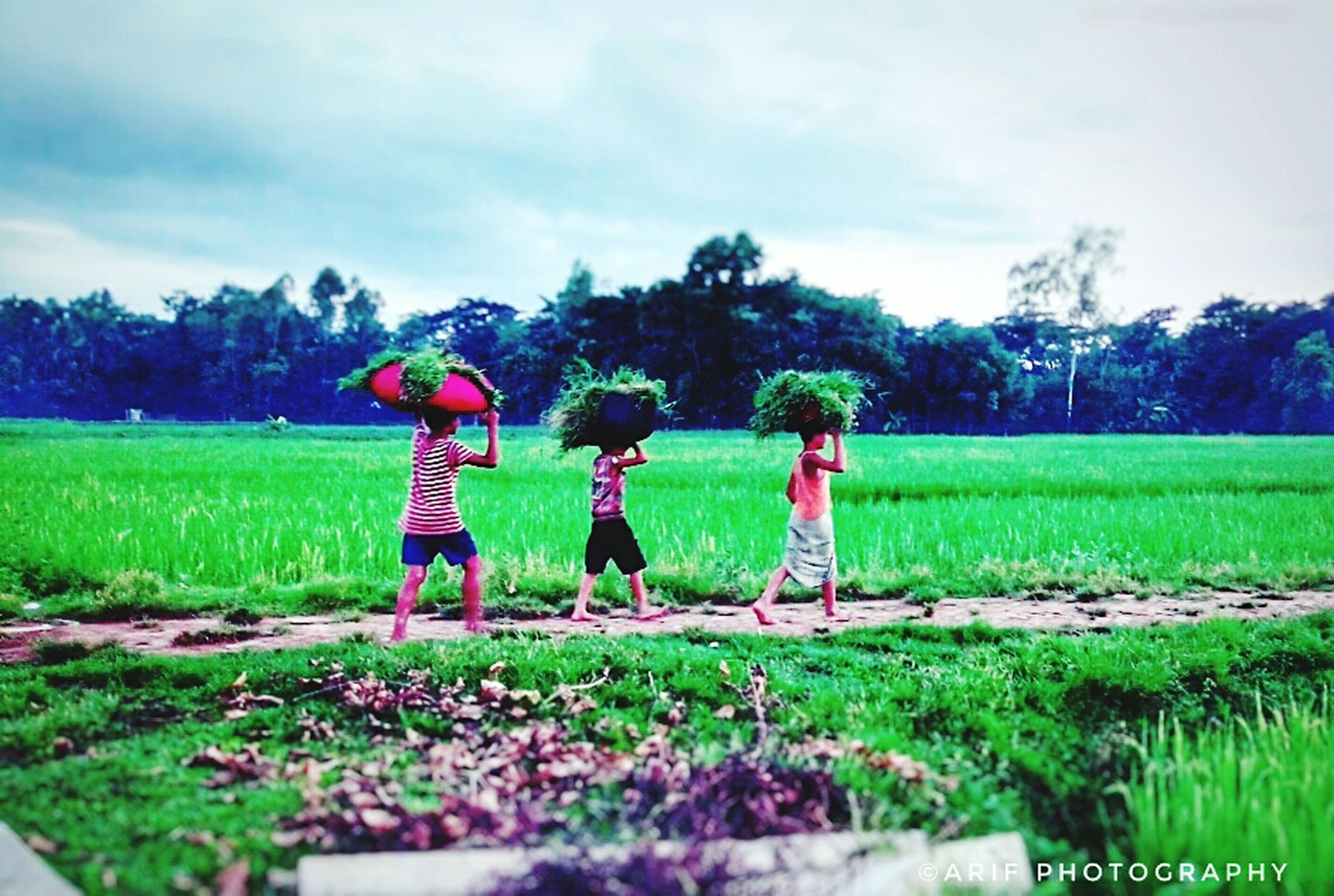 childhood, field, growth, grass, tree, togetherness, real people, green color, boys, day, girls, sky, outdoors, nature, full length, standing, child, landscape, beauty in nature, people