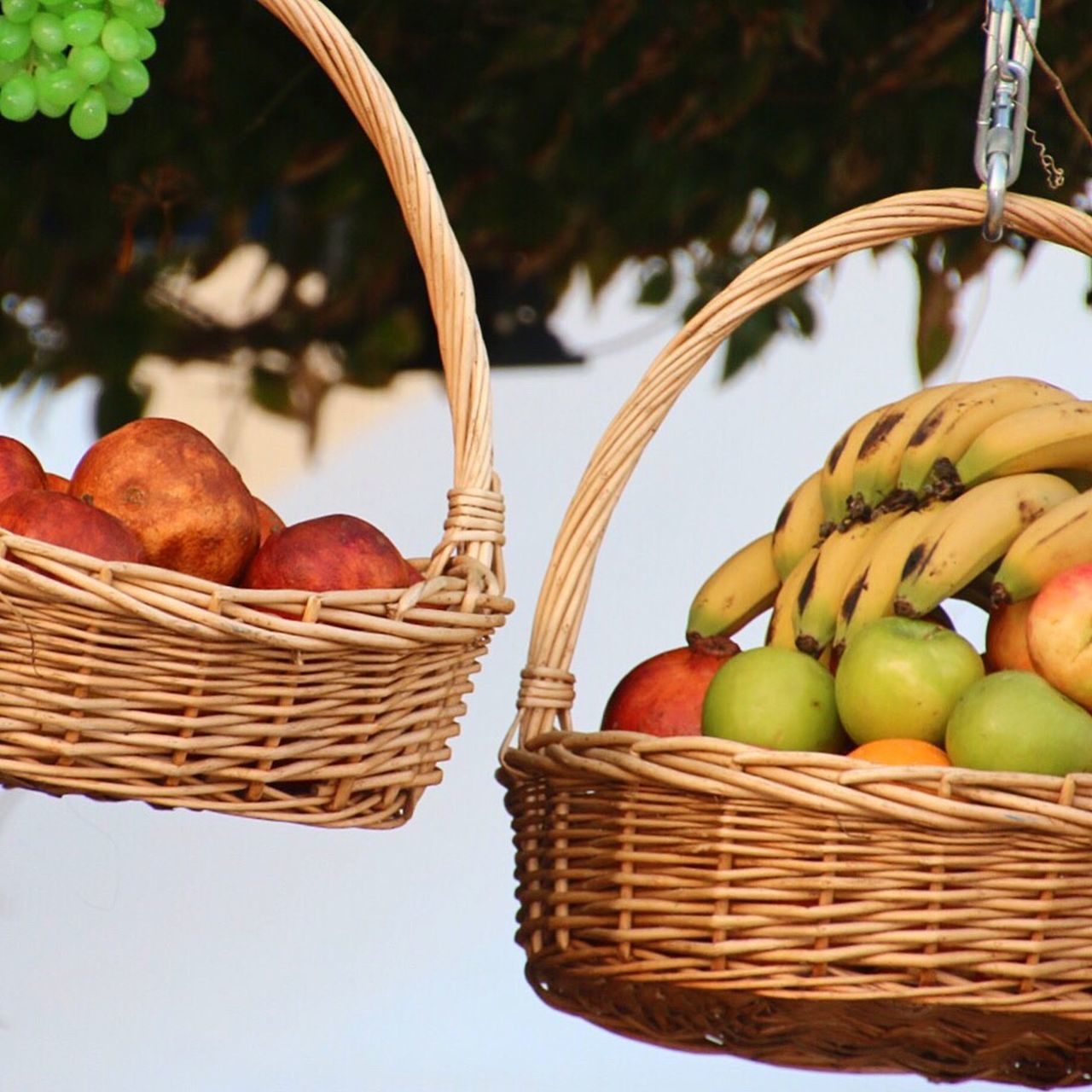 Beautiful stock photos of granny, Apple, Banana, Basket, Clear Sky