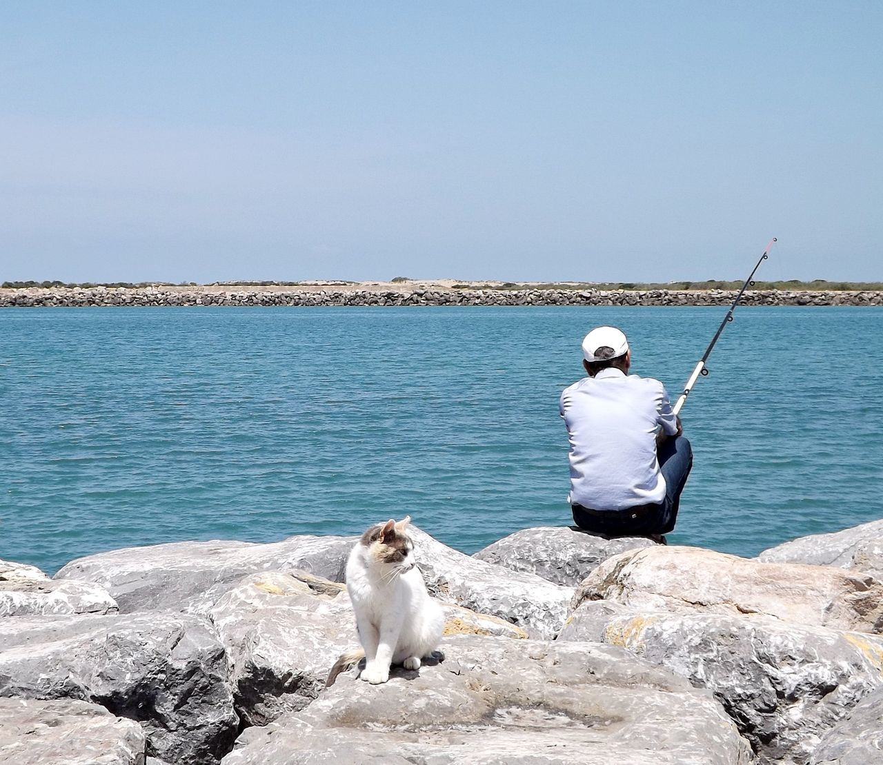 Beauty In Nature Casual Clothing Clear Sky Day Dog Domestic Animals Fishing Pole Full Length Horizon Over Water Leisure Activity Lifestyles Mammal Men Nature One Animal One Person Outdoors Pets Real People Rear View Rock - Object Sea Sitting Standing Water
