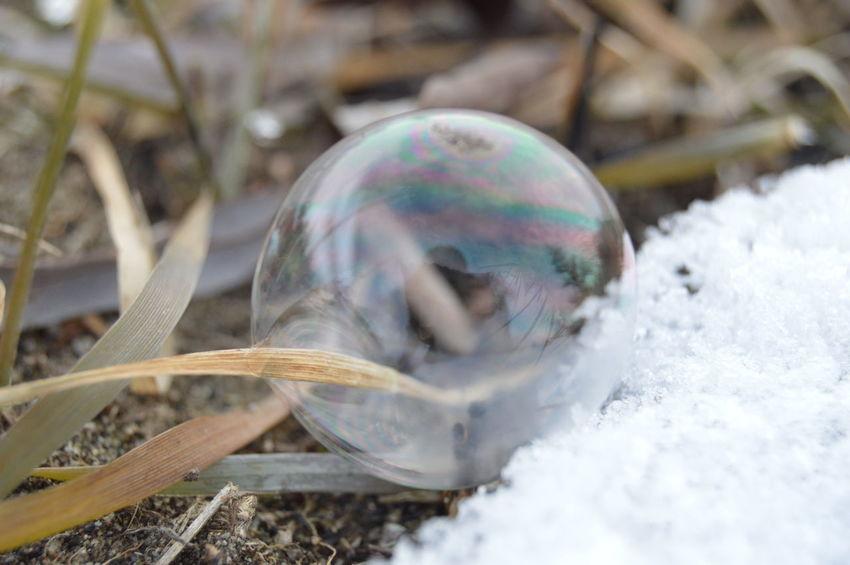 мыльный пузырь снег мороз трава зима отражение тучи пузырь