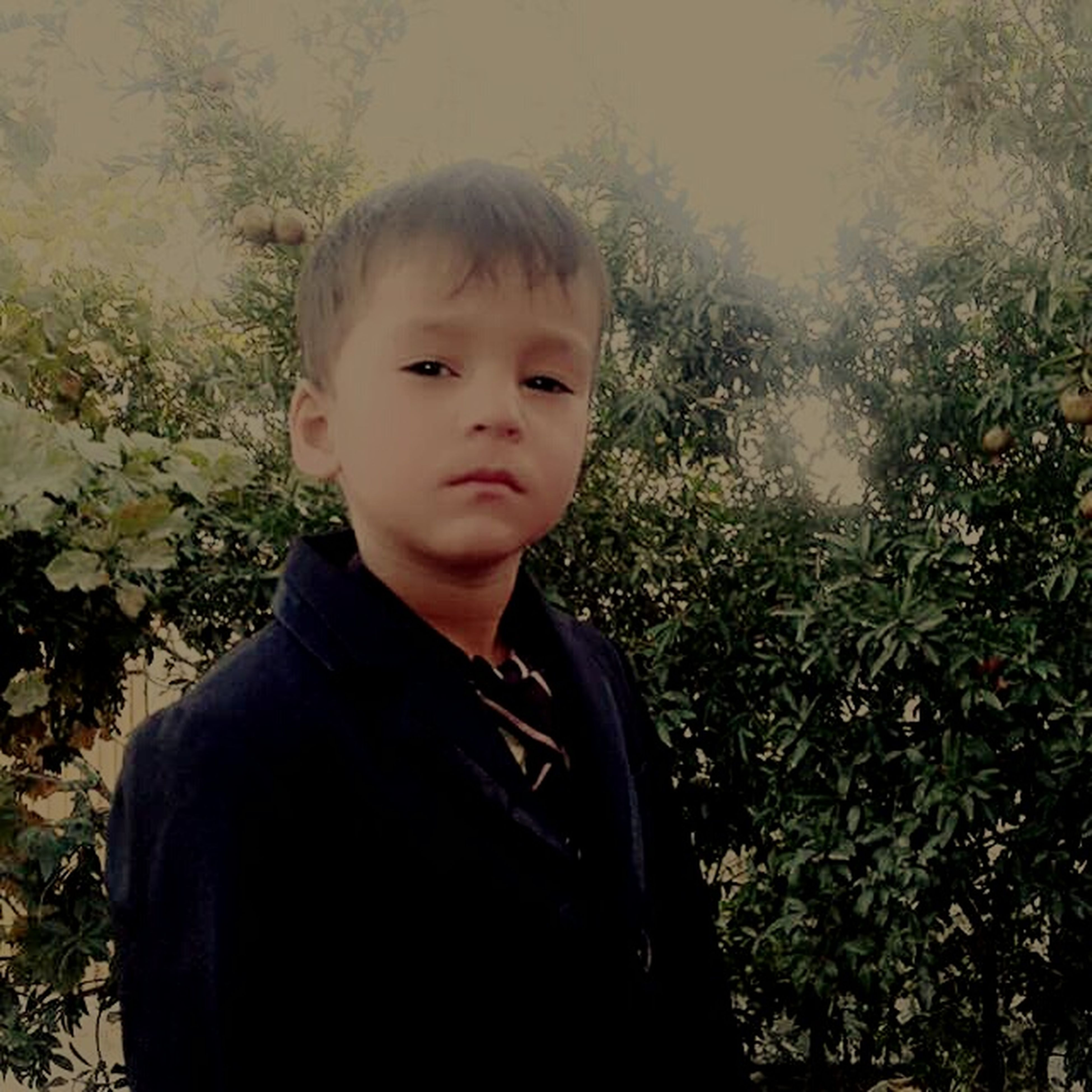 child, males, childhood, one boy only, boys, children only, looking at camera, front view, portrait, one person, people, nature, outdoors, close-up, day