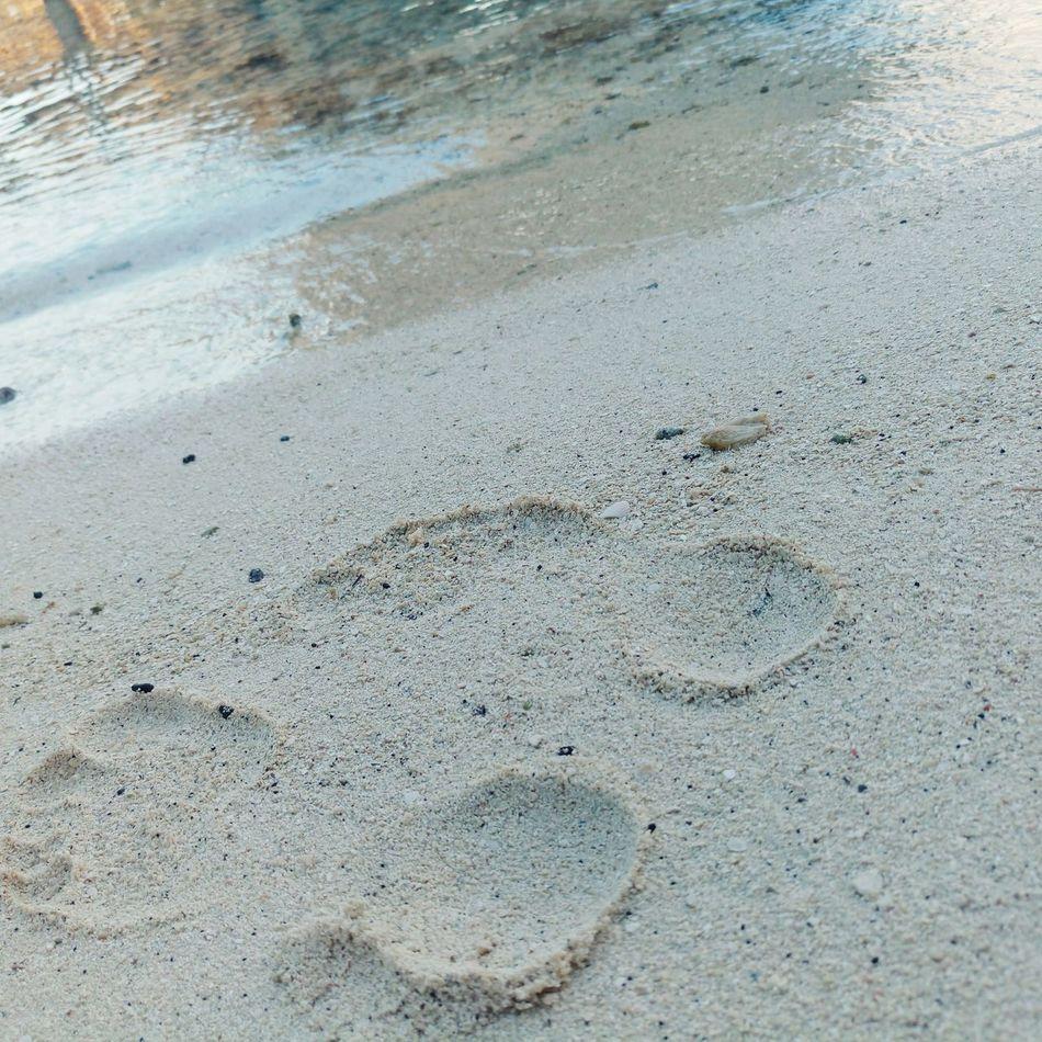 French Polynesia Sand Beach Tranquility