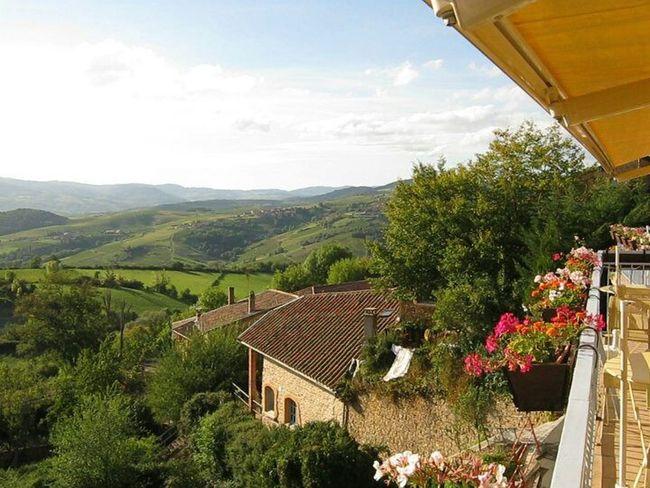 Beautiful France Viñedo Europe Travel Happy Missing Enyojing Life
