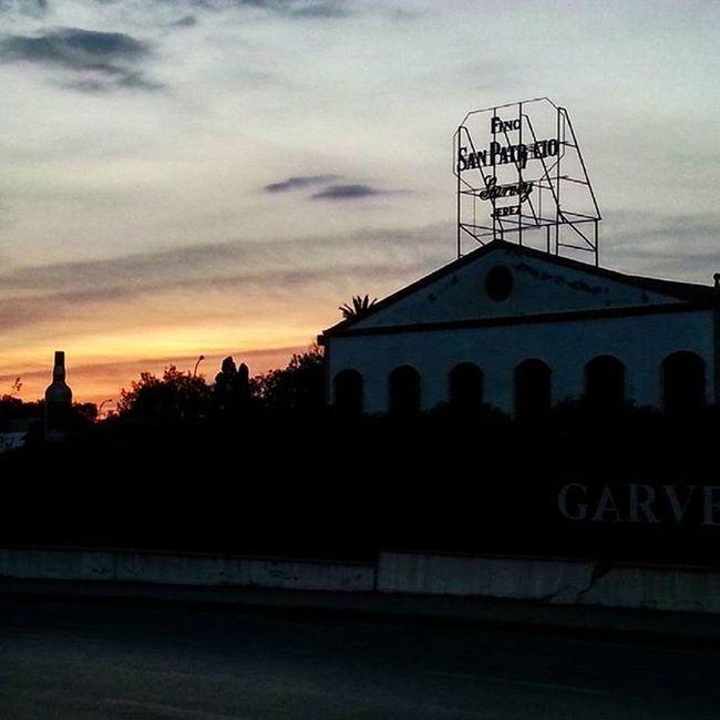 100happydays Atardecer en Jerez 🌅😊 Atardecer Bonito Espectacular Vino Finosanpatricio Garvey Bodega Vid Jerez Jerezdelafrontera Contraluz Silueta