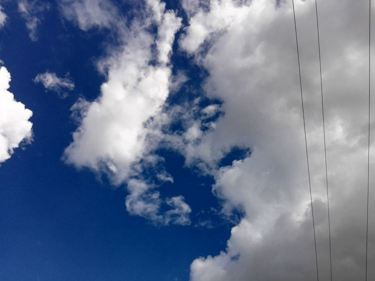 Cloud - Sky Blue Sky Flying Day Wind Outdoors No People Nature Close-up Edited By WOLFZUACHiV WOLFZUACHiV Photography On Market Huawei Photography Eyeem Market Veronica Ionita Wolfzuachiv WOLFZUACHiV Photos Ionita Veronica Huaweiphotography Edited By @WOLFZUACHiV Blue Sky And Clouds Wires And Sky
