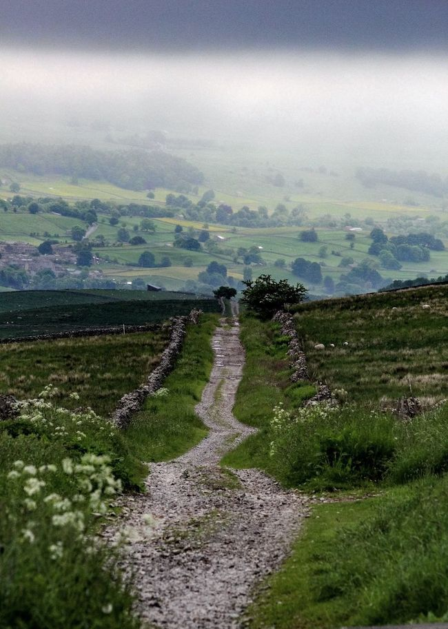 Meandering... one of my favourite passtimes. :) Landscape The Way Forward Tranquility Dirt Road Pathway Nature Non-urban Scene Yorkshire Dales