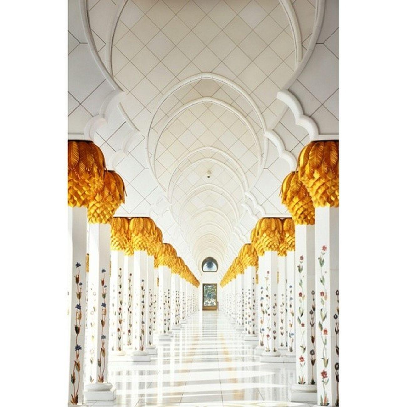 تصويري  مسجد الشيخ زايد الاماراتابوظبيتجريدابوشملانابراهيمالهزاعالسعوديةالرياضجديدنيكون