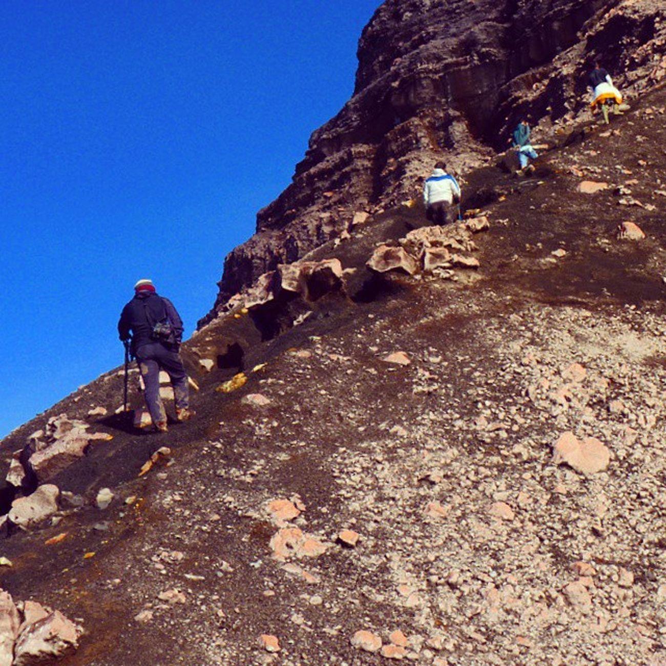 Mt Kerinci's Track 3.805 M dpl/Asl Ini merupakan jalur pendakian gunung kerinci yang bagi saya cukup ekstream, kemiringan medan yang cukup curam serta kondisi batuan yang cukup labil sangat harus di waspadai. Di sini jalur terpecah menjadi beberapa buat. Yang cukup menyulitkan dan membahayakan para pendaki, karena sewaktu kabut dan badai jalur turun akan tertutup dan bisa saja salah masuk ke jalur yang menuju jurang. Kewaspadaan dan komsentrasi sangat di butuhkan. Original Picture By Pudjakusuma Adventure. Pendakian Amal Bersama Warga Singapura. Mendaki gunung dan Berbagi . Crew n guade @editrisutresno Gunungkerinci Gunungtalang Gunungsemeru Pendakigunung Pendaki Adventure Eiger Tracking Kayuaro Jambi Mountain Mount Backpacker Mountainenthusiast Highlover Volcano Green Landscape Kayuaro Indonesian INDONESIA Wowindonesia Visitindonesia Ivj Pudjakusuma