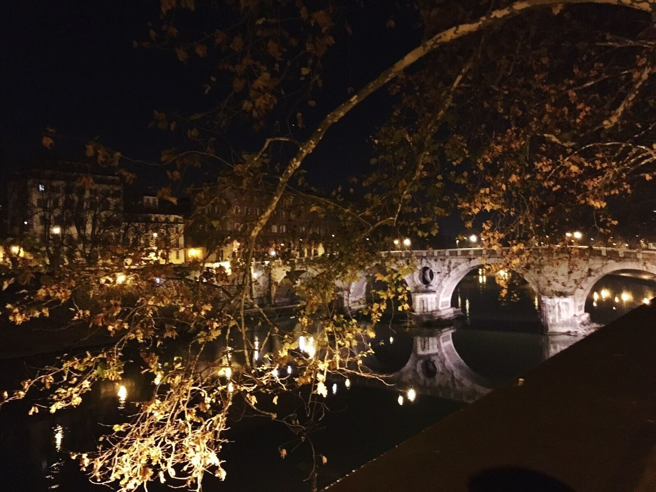 Roman Nights Soft Light Bridge Night Lights Experiencing Places Trees Pure Beauty ~the Atmosphere I love the most