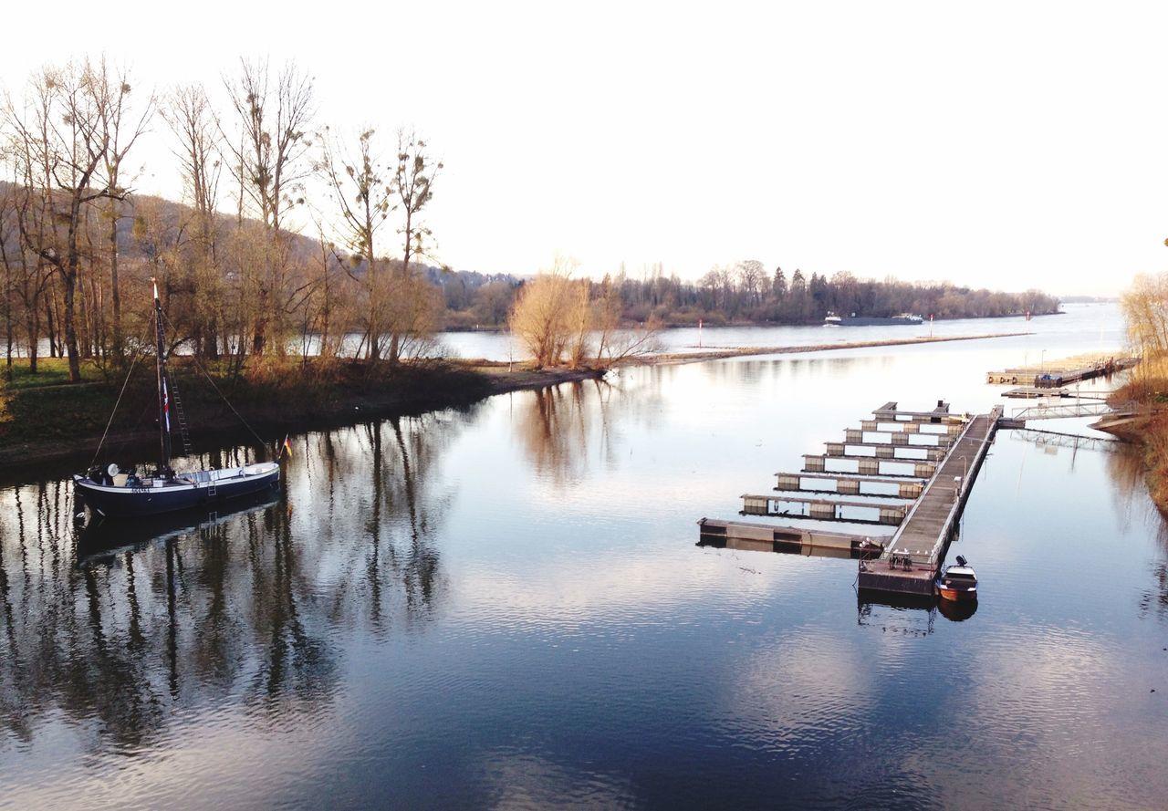 Lieblingsausblick in Bad Honnef Grafenwerth Bad Honnef Rhein Wasser Water Water Reflections Reflection Rhine Original Experiences The Great Outdoors - 2017 EyeEm Awards