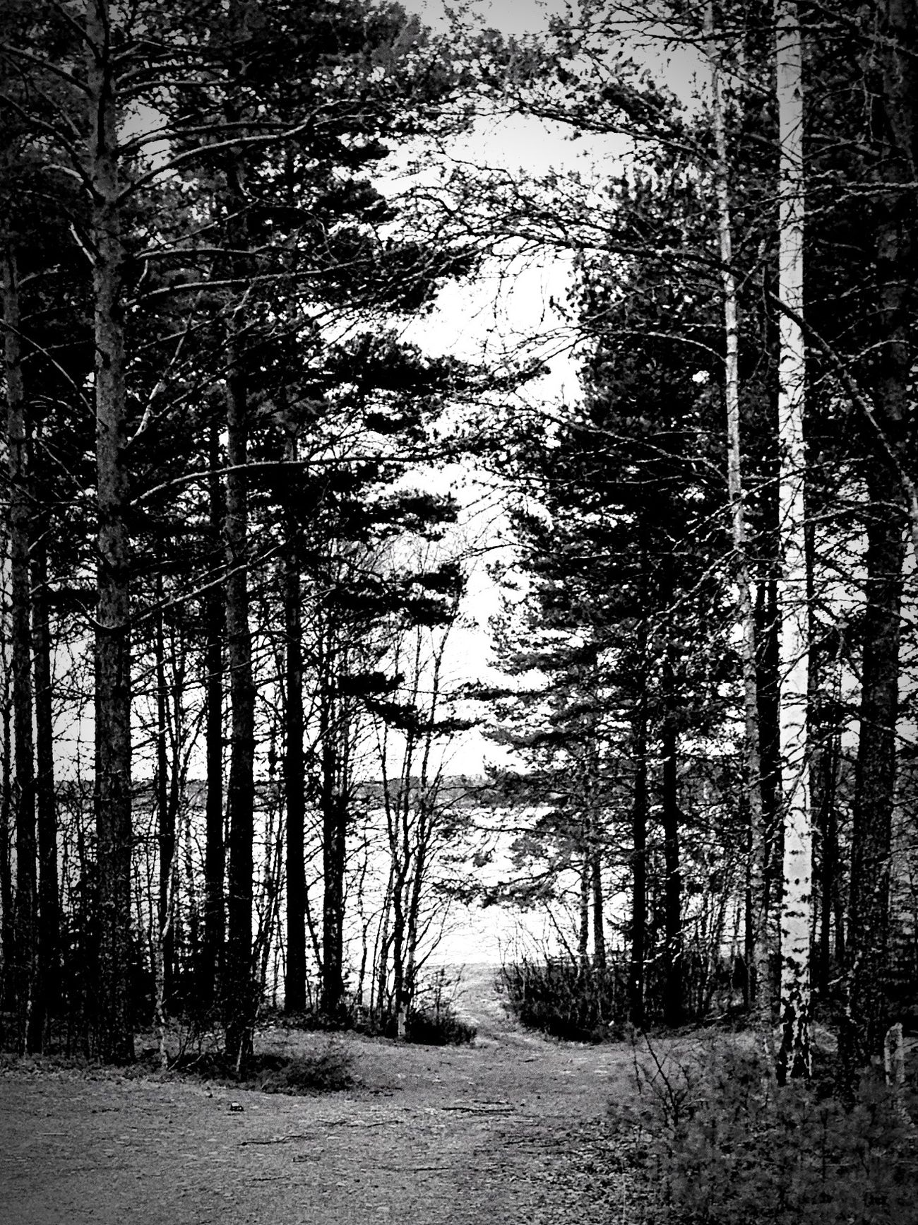 Small road down to the beach. Black and white.....