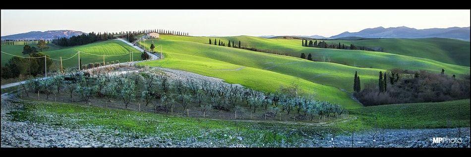 Tuscany countryside pano. Eye Em Best Shots Landscape_Collection Eye4photography  EyeEm Best Shots - Landscape