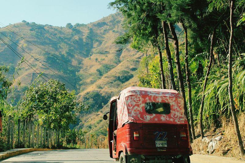 NoWhere Land in Guatemala Sun Tropical Jungle
