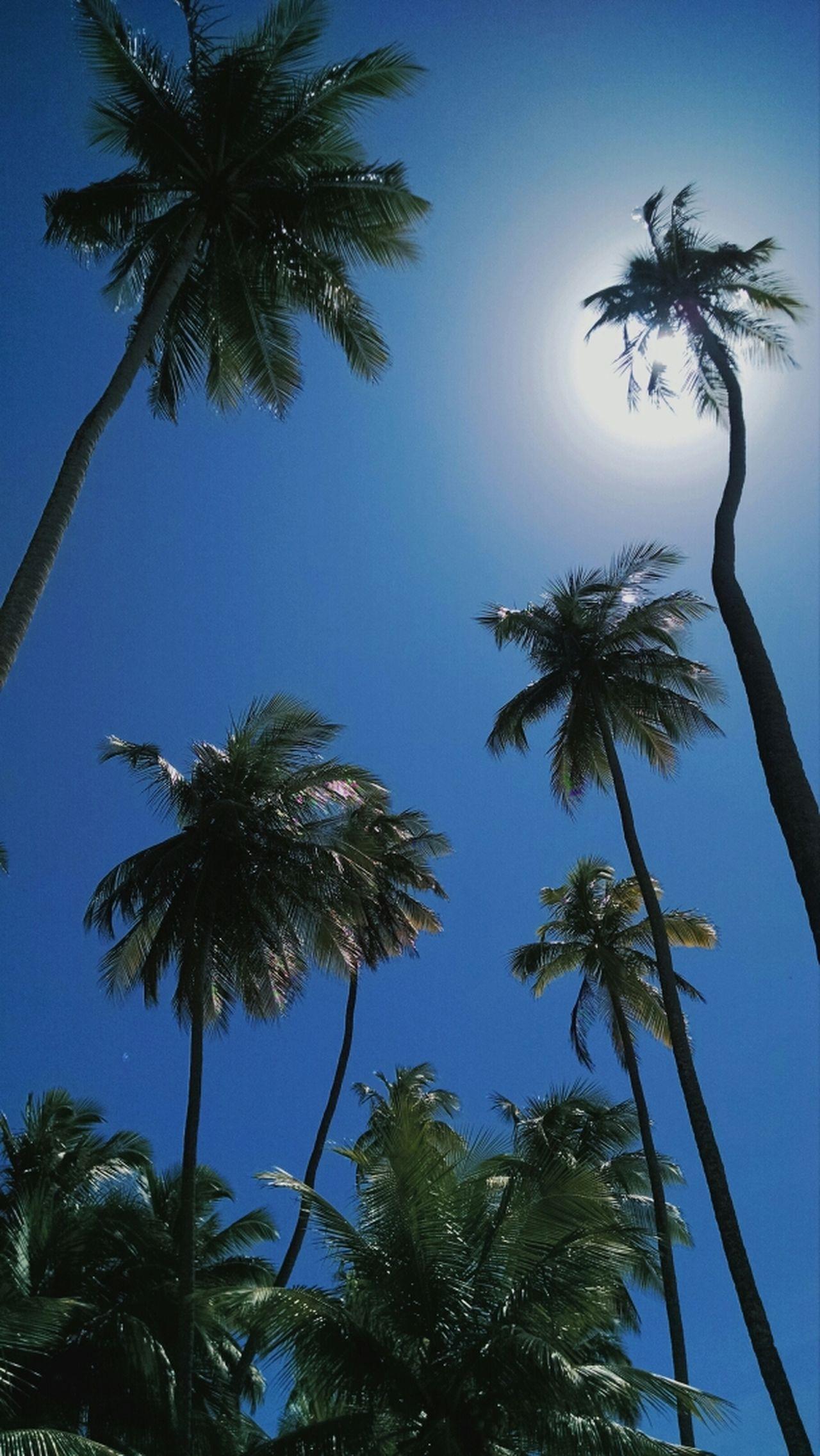 Sun Beach Sky Popular Photos