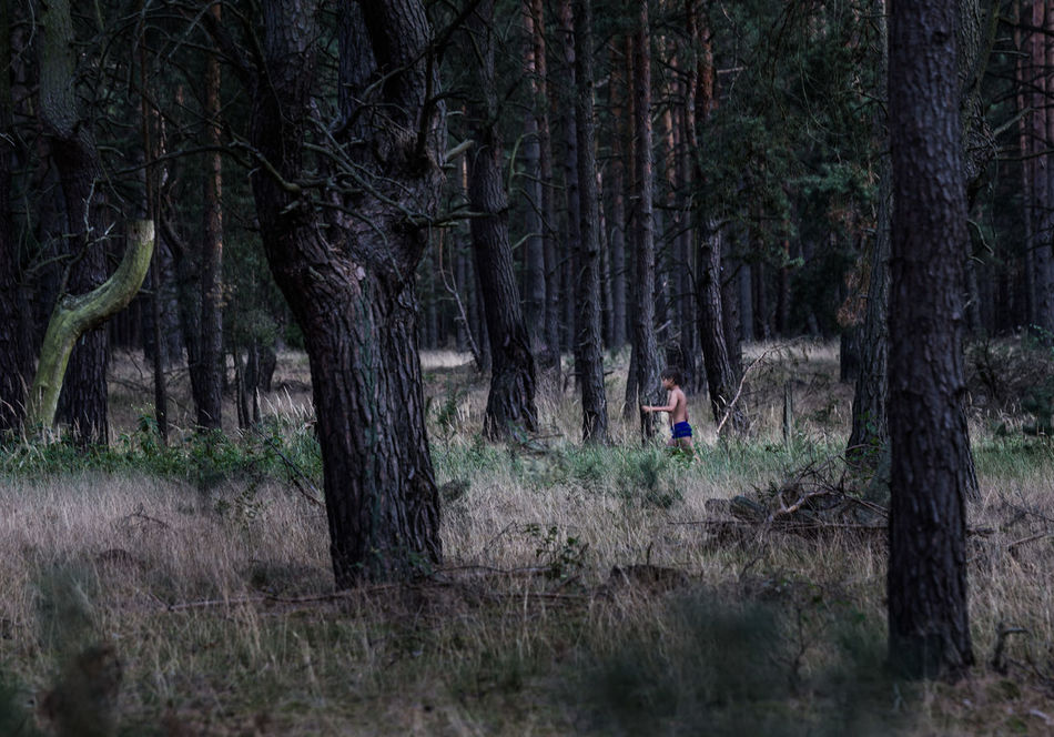 """LOST"" Forest One Person Tree Running Nature Photography Outdoors Nature Landscape_photography Landscape Labyrinth Kid Grass Landscape_Collection Forest Photography Evening Light Darkness Child Boy Alone Adventure Evening Dark Running Late Trees Landscape #Nature #photography The Secret Spaces"