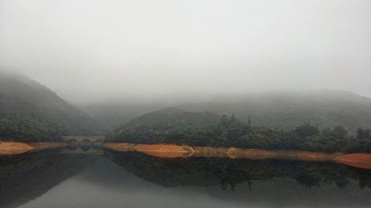 Meanwhile, in HongKong ...Fog TaiTamtuk Reservoir Errie Forrest Lake Bridge Scenic