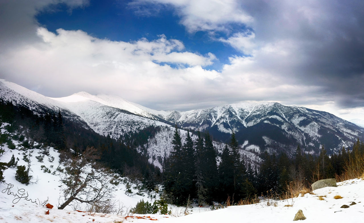 snow, winter, cold temperature, beauty in nature, weather, nature, mountain, tranquil scene, tranquility, scenics, white color, sky, cloud - sky, snowcapped mountain, landscape, no people, outdoors, frozen, day, tree, mountain range, snowdrift, range